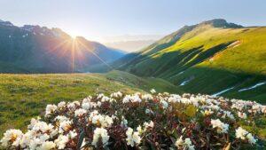 Горящие туры по Кавказу
