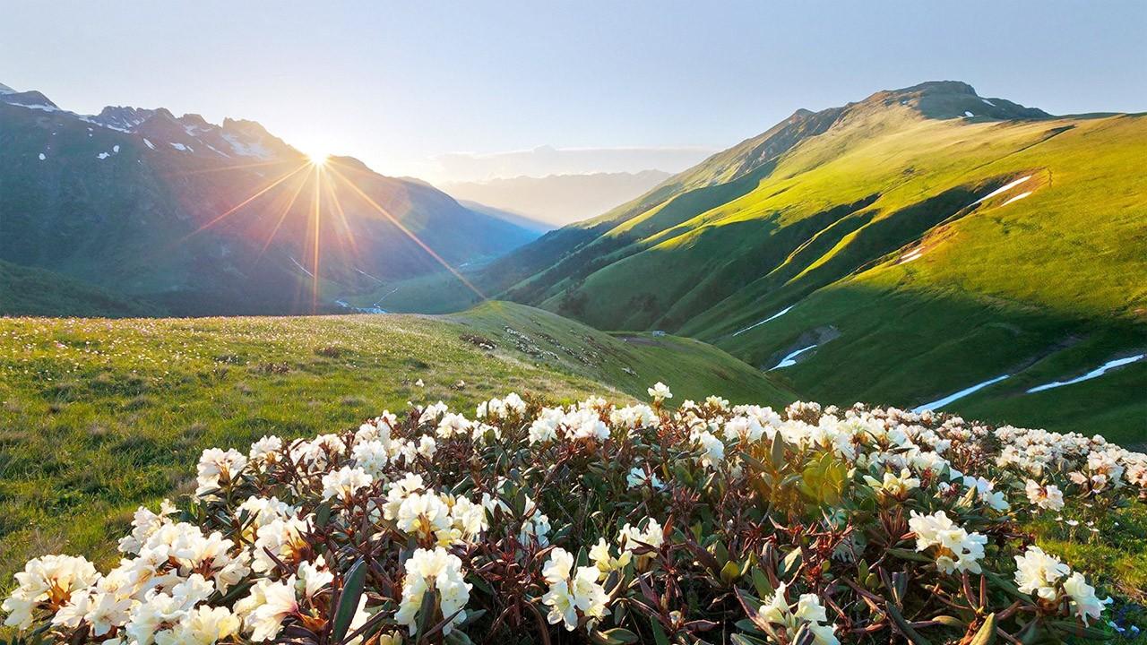 весна на Кавказе
